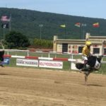 Ostrich and Camel racing returns to Penn National Race Course in PA.